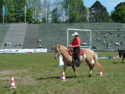Pferd International 20