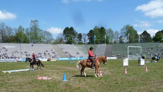 Pferd International 22