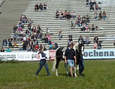 Pferd International 24