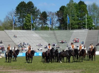 Pferd International 27