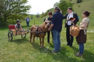 Pferdesegnung 2015 10