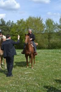 Pferdesegnung 2015 24