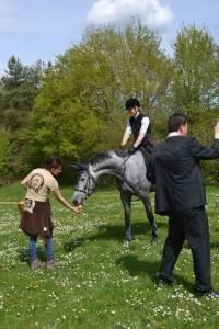 Pferdesegnung 2015 25