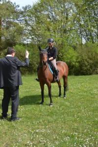 Pferdesegnung 2015 28