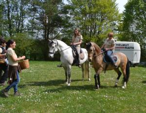 Pferdesegnung 2015 30