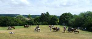 Pferdesegnung 7 2012 01