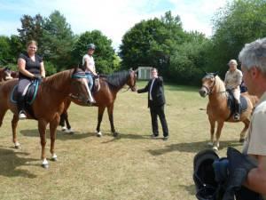 Pferdesegnung 7 2012 03