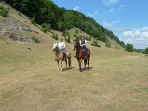 Pferdesegnung 7 2012 05