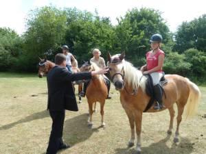Pferdesegnung 7 2012 06