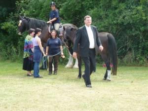 Pferdesegnung 7 2012 07