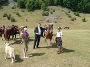 Pferdesegnung 7 2012 13