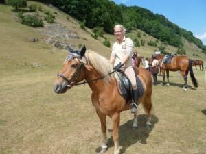 Pferdesegnung 7 2012 25