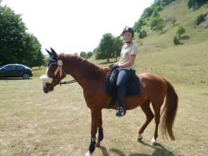 Pferdesegnung 7 2012 26