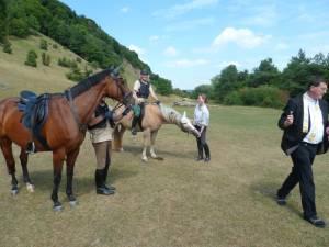 Pferdesegnung 7 2012 28