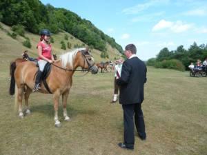 Pferdesegnung 7 2012 30