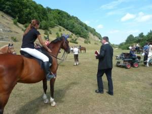 Pferdesegnung 7 2012 31