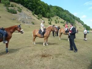 Pferdesegnung 7 2012 32
