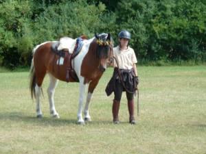 Pferdesegnung 7 2012 43