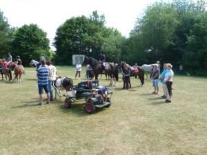 Pferdesegnung 7 2012 47