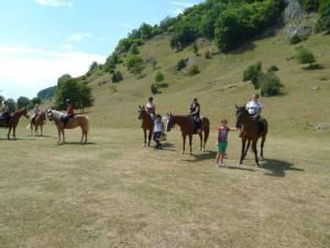 Pferdesegnung 7 2012 52