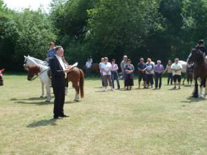 Pferdesegnung 7 2012 54