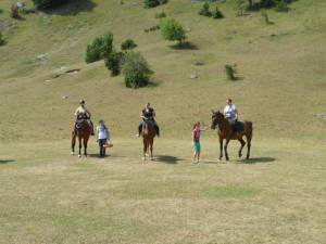 Pferdesegnung 7 2012 56