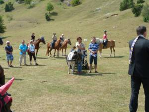 Pferdesegnung 7 2012 57