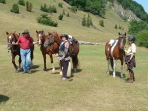 Pferdesegnung 7 2012 58