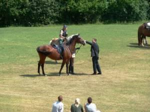 Pferdesegnung 7 2012 74