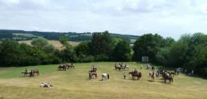 Pferdesegnung 7 2012 79