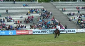 Pferdinter 5 2012 15