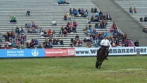 Pferdinter 5 2012 16