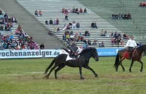 Pferdinter 5 2012 18