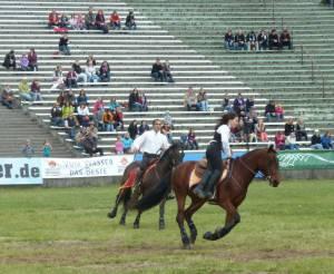 Pferdinter 5 2012 20