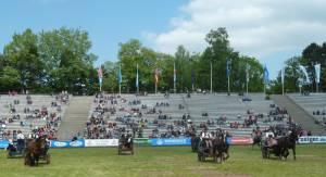 Pferdinter 5 2012 21