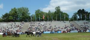 Pferdinter 5 2012 25