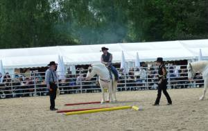 Pferdinter 5 2012 27