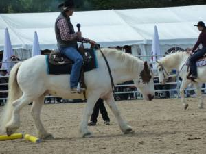 Pferdinter 5 2012 28