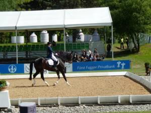Pferdinter 5 2012 30