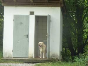 Zeltlager 7 2012 55