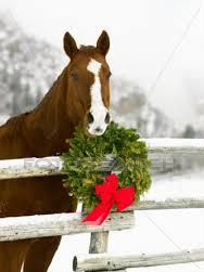Pferd_weihnachten